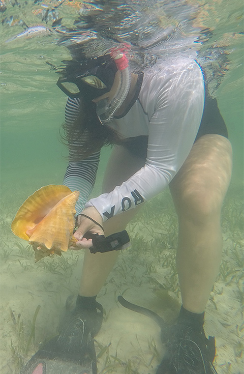 Students snorkeling at the Bahamas
